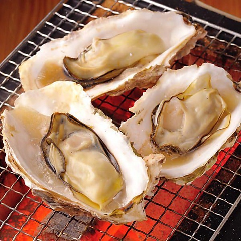 【究極の生牡蠣食べ放題コース】〈2時間飲み放題付き〉6500円→5500円