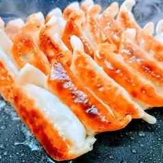熊本とんこつ餃子