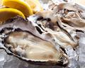 料理メニュー写真三陸産蒸し牡蠣