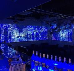 プロジェクションマッピングレストラン Barliminal Roppongiの写真