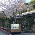 春はお店の前に桜が咲き誇ります。