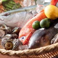旬な鮮魚を毎日仕入れております!