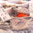 その日仕入れた鮮魚たち