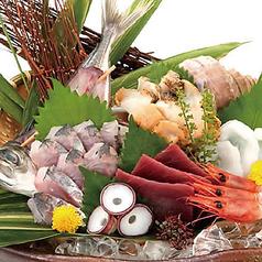 <刺身盛り合わせ>日本海波盛り(五種盛り) 1人前