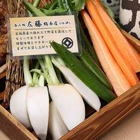 お通しは宮城・東北の野菜で