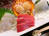 鶴丸 松江のおすすめ料理2