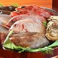 手桶でお持ちする旬の鮮魚でございます!お好きな調理方法でどうぞ!新宿の個室居酒屋 新宿宮川昭和ビル店を是非ご利用くださいませ。天然魚の姿造りコースは、全9品2時間飲み放題付き4,800円(税抜)でご用意いたしております。