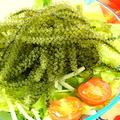 料理メニュー写真プチプチ!海ぶどう