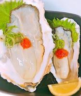 産地直送殻付き牡蠣