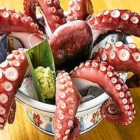 【市場から直接仕入れている新鮮魚介をご堪能下さい♪】