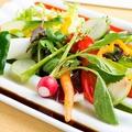 料理メニュー写真水素還元12種サラダ ~有機野菜ソース仕立て~