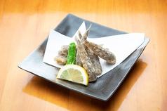 日本料理 高浜のおすすめ料理1