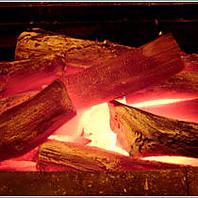 紀州産の備長炭で焼き上げる串焼き!