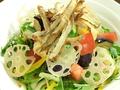 料理メニュー写真15種類健康サラダ~ごぼうチップ乗せ~