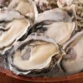 料理メニュー写真ニュージーランド産 活〆牡蠣