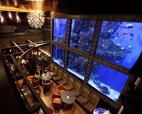 ★ウミガメが泳ぐ幻想的な空間でお食事を・・・朝5時まで営業しております★