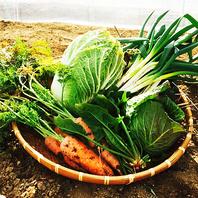 地産地消のこだわり野菜!