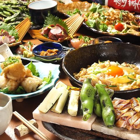 【5/11Newオープン!】鮮度抜群大山がいなを使った鶏料理が楽しめる和食屋