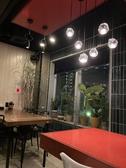 トディーズ TODDYS シュリンプ shrimp 船橋駅前店の雰囲気2