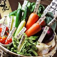地の物を…湘南野菜は鮮度も味もバツグン!