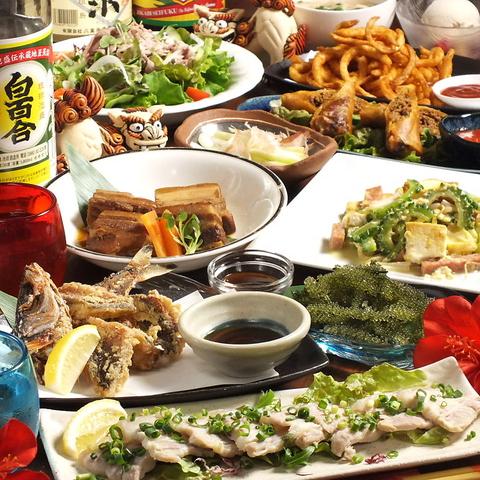 六本木で味わえる本格沖縄料理♪宴会プランも大好評☆★