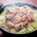 料理メニュー写真鉄板 塩ホルモンキャベツ