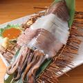 料理メニュー写真イカ小僧の姿造り