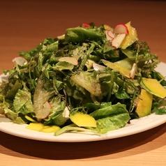 料理メニュー写真香味野菜のたっぷりボンバーサラダ!/ハーフサイズ