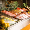 カウンターには新鮮な魚や食材がずらり。見て楽しめます。