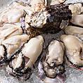 【おまかせ生牡蠣10点盛り】4,800円旬の生牡蠣を10ピース、お得な価格でご提供。牡蠣をがっつり召し上がりたい方におすすめです!