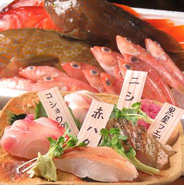 海里 みさと 赤羽のおすすめ料理1