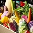 全国の契約農家と京都自社農園から届く有機・無農薬野菜でおもてなし♪