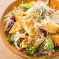 料理メニュー写真■シーザーサラダ