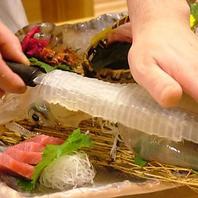 店主目利きで仕入れた鮮度抜群の海鮮類をご堪能下さい。