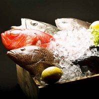 「パッチョ」のこだわり新鮮鮮魚!イタリアン風にどうぞ