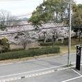 桜の季節は、お花見ができる特等席!