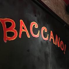 鉄板Bar Baccano! バッカーノのコース写真