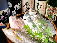 【糸島直送!!】新鮮な野菜・魚介を使用した料理が自慢
