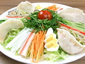 料理メニュー写真サラダ餃子