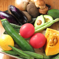 季節のお野菜を楽しむ!