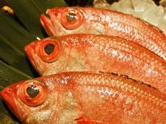 魚山人の写真