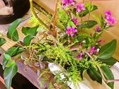 こーひー ゆう花の雰囲気2
