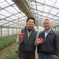 【タンジョウ農場の野菜】千葉市の農家さん。少量・多品目で西洋野菜を中心に栽培しています。この農場の野菜は味が非常に濃いのが特徴。