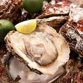 【新鮮食材使用】豊洲から毎日、新鮮な海の幸を仕入れております!