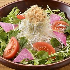 水菜と大根のハリハリサラダ