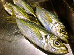 漁師料理 十次郎のおすすめポイント1