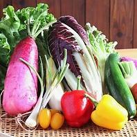 健康に優しい野菜を使用した料理を提供します。