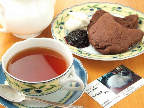猫店長が営む和みカフェ♪オーナーが愛するかわいい猫の家族達が出迎えてくれます♪