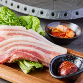 個室韓流酒場 韓国コレクション 韓コレ299 小倉駅前店のおすすめ料理2