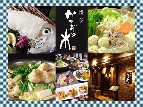 博多の旨いが勢ぞろい!水炊き、もつ鍋、活いか造り、明太子料理!